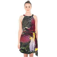 Cendrawasih Beautiful Bird Of Paradise Halter Collar Waist Tie Chiffon Dress