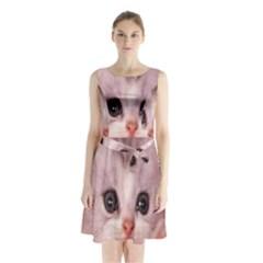 Cat  Animal  Kitten  Pet Sleeveless Waist Tie Chiffon Dress
