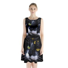 Face Black Cat Sleeveless Waist Tie Chiffon Dress