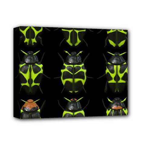 Beetles Insects Bugs Deluxe Canvas 14  X 11