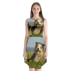 Bearded Collie Laying Sleeveless Chiffon Dress
