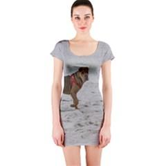 Shar Pei On Beach Short Sleeve Bodycon Dress