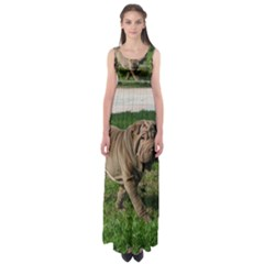 Shar Pei Full 3 Empire Waist Maxi Dress