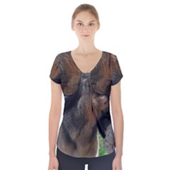 German Shepherd With Toy Short Sleeve Front Detail Top