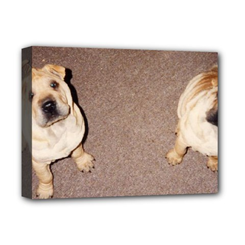 2 Tan Shar Pei Puppies Deluxe Canvas 16  X 12