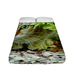 Hidden Domestic Cat With Alert Expression Fitted Sheet (full/ Double Size)