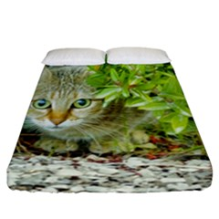 Hidden Domestic Cat With Alert Expression Fitted Sheet (california King Size)
