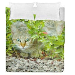 Hidden Domestic Cat With Alert Expression Duvet Cover Double Side (queen Size)