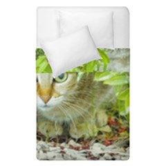 Hidden Domestic Cat With Alert Expression Duvet Cover Double Side (single Size)