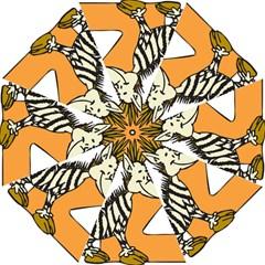 Zebra Animal Alphabet Z Wild Folding Umbrellas
