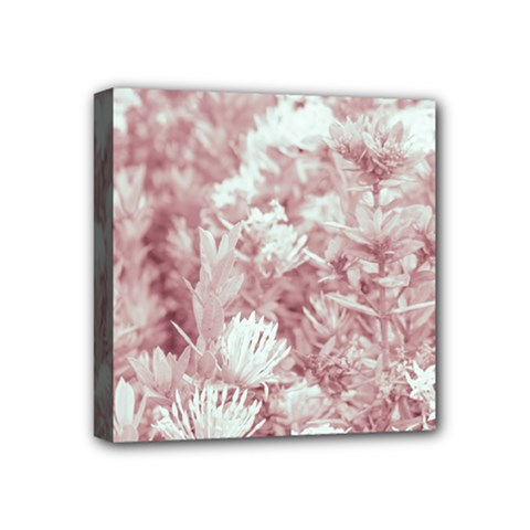 Pink Colored Flowers Mini Canvas 4  X 4