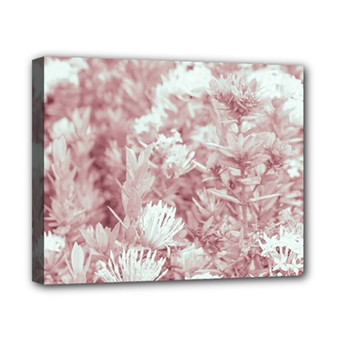 Pink Colored Flowers Canvas 10  X 8