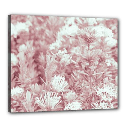 Pink Colored Flowers Canvas 24  X 20