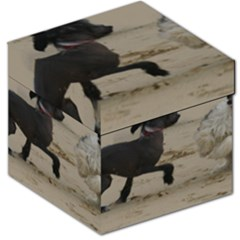 2 Chinese Crested Playing Storage Stool 12