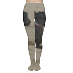 2 Chinese Crested Playing Women s Tights