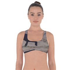 2 Chinese Crested Playing Got No Strings Sports Bra