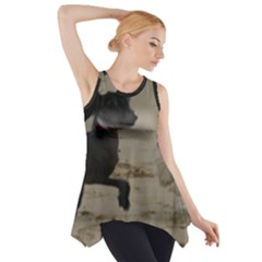 2 Chinese Crested Playing Side Drop Tank Tunic
