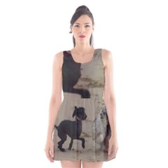 2 Chinese Crested Playing Scoop Neck Skater Dress