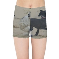 2 Chinese Crested Playing Kids Sports Shorts