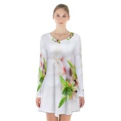 Fragility Flower Petals Tenderness Leaves  Long Sleeve Velvet V Neck Dress
