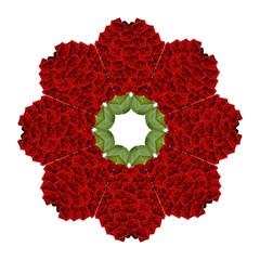 Romantic Red Rose Apple Straight Umbrellas