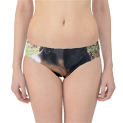 Greater Swiss Mountain Dog Hipster Bikini Bottoms