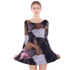 Greater Swiss Mountain Dog Long Sleeve Velvet Skater Dress