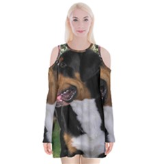Greater Swiss Mountain Dog Velvet Long Sleeve Shoulder Cutout Dress
