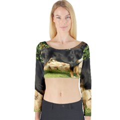 Gsmd Full Long Sleeve Crop Top