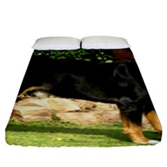Gsmd Full Fitted Sheet (king Size)