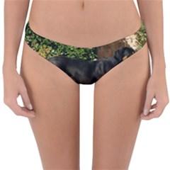 Gsmd Full Reversible Hipster Bikini Bottoms