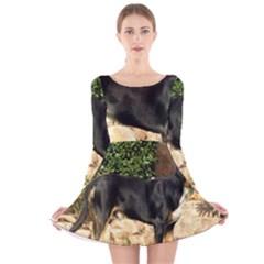 Gsmd Full Long Sleeve Velvet Skater Dress