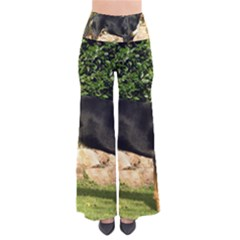 Gsmd Full Pants