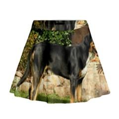 Gsmd Full Mini Flare Skirt