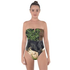 Gsmd Full Tie Back One Piece Swimsuit