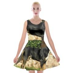 Gsmd Full Velvet Skater Dress