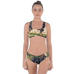 Gsmd Full Criss Cross Bikini Set