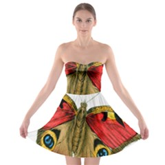 Butterfly Bright Vintage Drawing Strapless Bra Top Dress