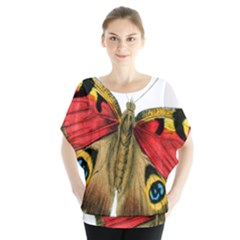 Butterfly Bright Vintage Drawing Blouse