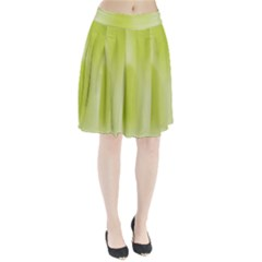 Green Soft Springtime Gradient Pleated Skirt
