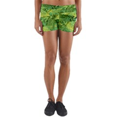 Green Springtime Leafs Yoga Shorts
