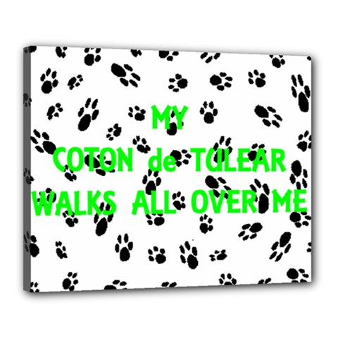 My Coton Walks On Me Canvas 20  X 16