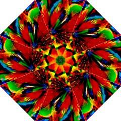 Flowers With Color Kick 1 Folding Umbrellas