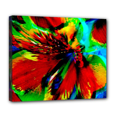 Flowers With Color Kick 1 Deluxe Canvas 24  X 20
