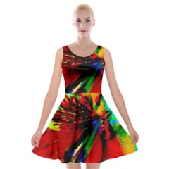 Flowers With Color Kick 1 Velvet Skater Dress