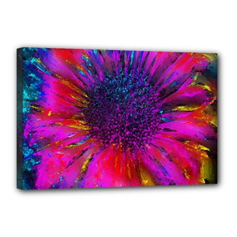 Flowers With Color Kick 3 Canvas 18  X 12