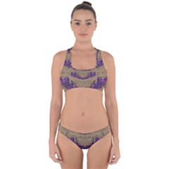 Pearl Lace And Smiles In Peacock Style Cross Back Hipster Bikini Set