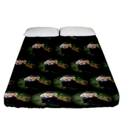 Cute Animal Drops   Red Panda Fitted Sheet (king Size)