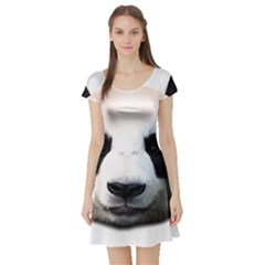 Panda Face Short Sleeve Skater Dress