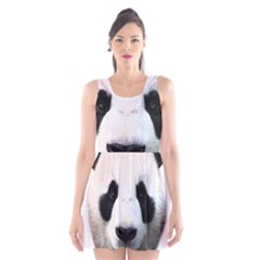 Panda Face Scoop Neck Skater Dress